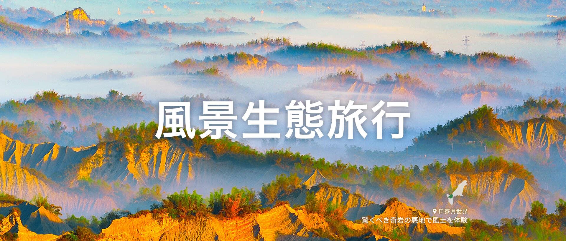 風景生態 旅行